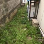 家周り 防草対策 施工